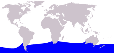 Southern Bottlenose Whale habitat map