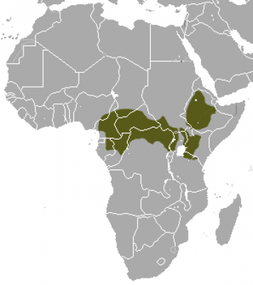 Mantled Guereza habitat map