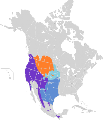 Spotted Towhee habitat map