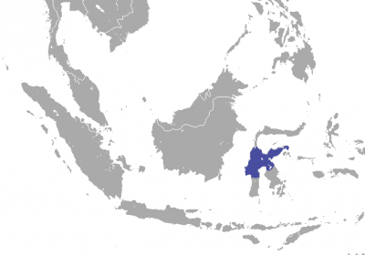 Tonkean Macaque habitat map