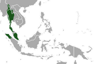 Lar Gibbon habitat map