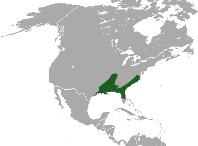 Southern Short-Tailed Shrew habitat map