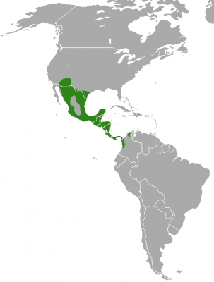 White-Nosed Coati habitat map