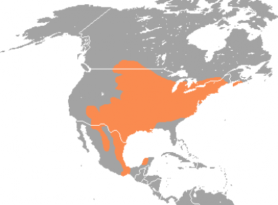 White-Footed Mouse habitat map