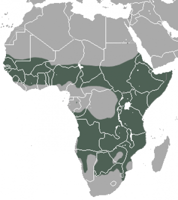 Spotted Hyena habitat map