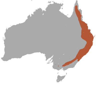 Squirrel Glider habitat map