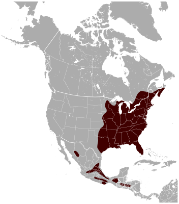 Southern Flying Squirrel habitat map