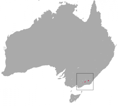 Mountain Pygmy Possum habitat map
