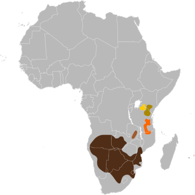 Blue Wildebeest habitat map