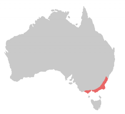 Gang-Gang Cockatoo habitat map
