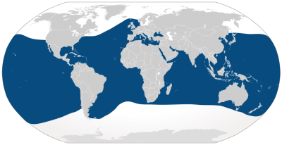 Common Bottlenose Dolphin habitat map