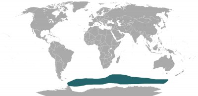Antarctic Fur Seal habitat map