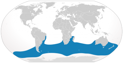 Southern Right Whale habitat map
