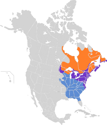 American Black Duck habitat map