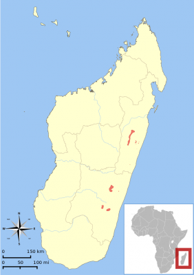 Greater Bamboo Lemur habitat map