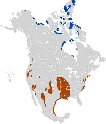 Snow Goose habitat map