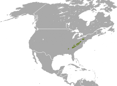 Appalachian Cottontail habitat map
