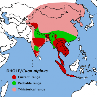 Dhole habitat map