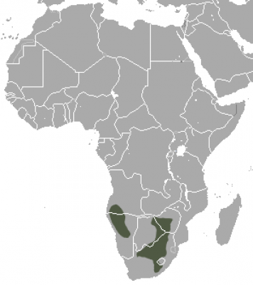 Southern African Hedgehog habitat map