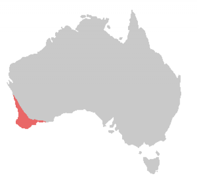 Carnaby's Black Cockatoo habitat map