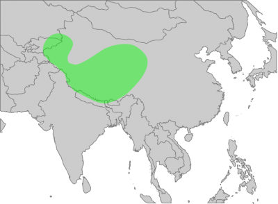 Himalayan Vulture habitat map