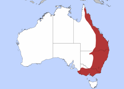 Swamp Wallaby habitat map