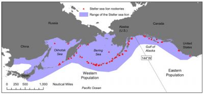 Steller Sea Lion habitat map