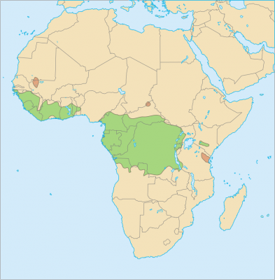 African Golden Cat habitat map