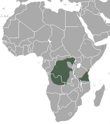 Angola Colobus habitat map