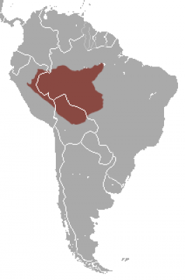 Peruvian Spider Monkey habitat map