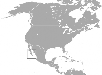 Black Jackrabbit habitat map