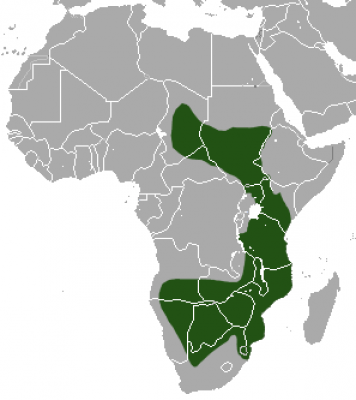 Ground Pangolin habitat map