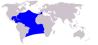 Atlantic Spotted Dolphin habitat map