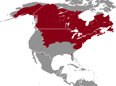 Meadow Vole habitat map