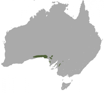 Southern Hairy-Nosed Wombat habitat map