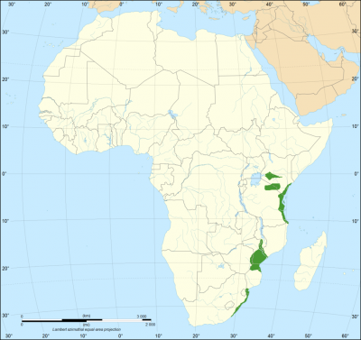 Eastern Green Mamba habitat map