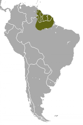 Red-Faced Spider Monkey habitat map