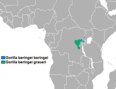 Eastern Gorilla habitat map