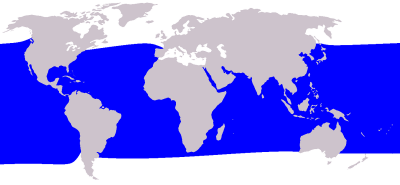 Short-Finned Pilot Whale habitat map