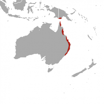 Red-Legged Pademelon habitat map