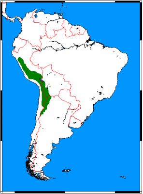 Vicuna habitat map