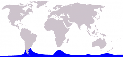 Hourglass Dolphin habitat map