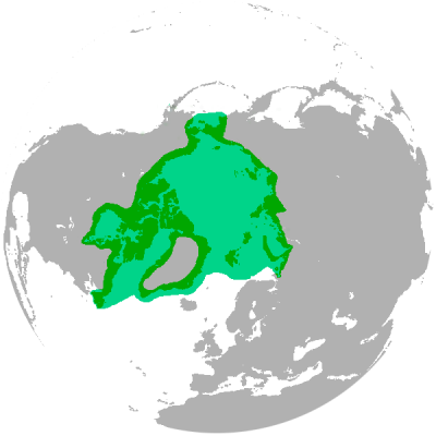 Polar Bear habitat map