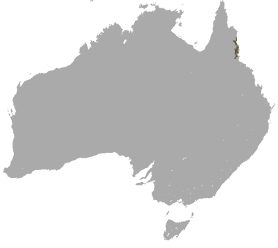 Musky Rat-Kangaroo habitat map