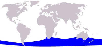 Pygmy Right Whale habitat map