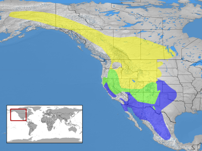 Mountain Bluebird habitat map