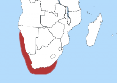 African Penguin habitat map