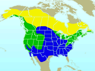 Dark-Eyed Junco habitat map