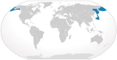 North Pacific Right Whale habitat map